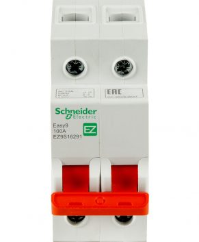 2P 125AMP SWITCH (SCHNEIDER)